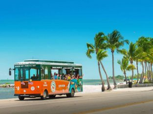 Spend your evening with Beach Tour packages