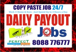 Home Based Jobs | Data Entry work | Copy paste Daily Payout